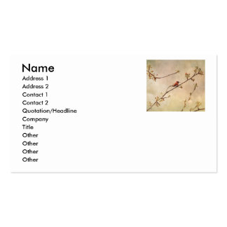 Colibrí en cerezo floreciente tarjetas de visita