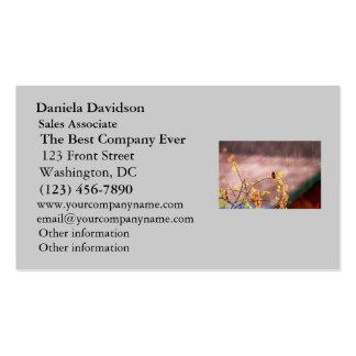 Colibrí en ducha de lluvia tarjetas de negocios