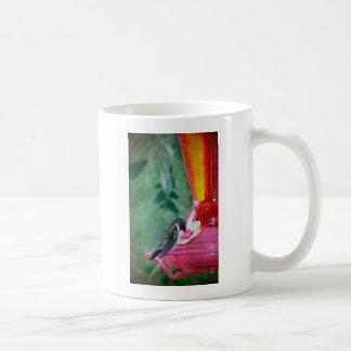 Colibrí en el alimentador taza de café