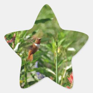 Colibrí en flores salvajes pegatina en forma de estrella