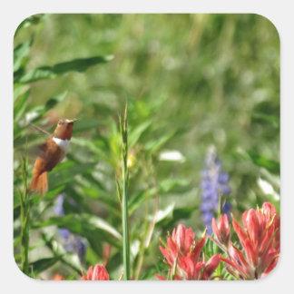 Colibrí en flores salvajes pegatina cuadrada