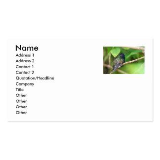 Colibrí en foto de la selva tarjetas de visita