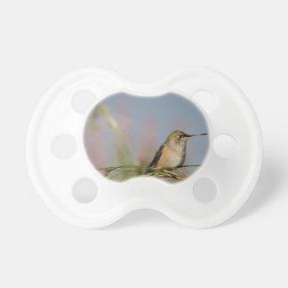 colibrí en hierba chupete de bebé