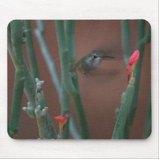 colibrí en la misión Mousepad