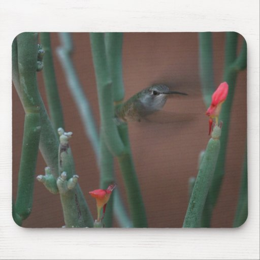 colibrí en la misión Mousepad Tapete De Ratones