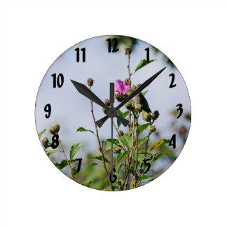 Colibrí encaramado reloj redondo mediano
