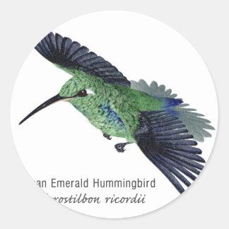 Colibrí esmeralda cubano con nombre pegatinas redondas