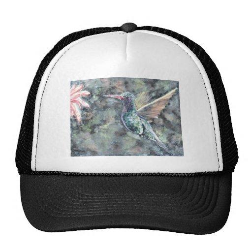 colibrí gorras de camionero