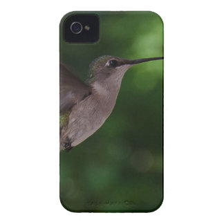 Colibrí iPhone 4 Case-Mate Protector