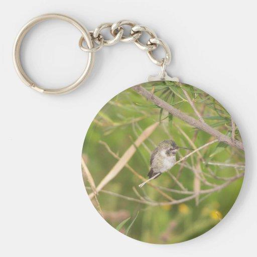 colibrí llavero redondo tipo pin