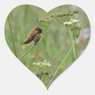 Colibrí: Pájaro en flores Pegatina En Forma De Corazón