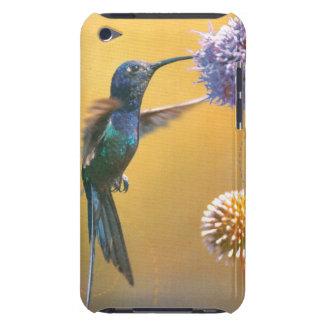 colibrí púrpura de la flor del caso del tacto de iPod Case-Mate cárcasa