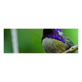 Colibrí púrpura tarjeta de visita