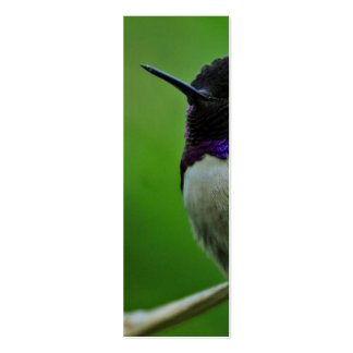 Colibrí púrpura tarjetas de visita