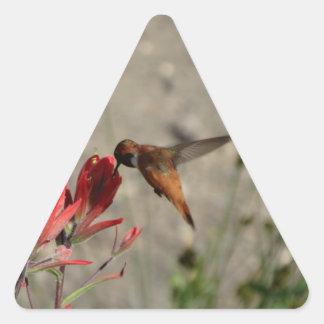 Colibrí rojo del wildflower pegatina triangular