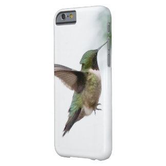 Colibrí Rubí-throated del pájaro animal Funda Barely There iPhone 6