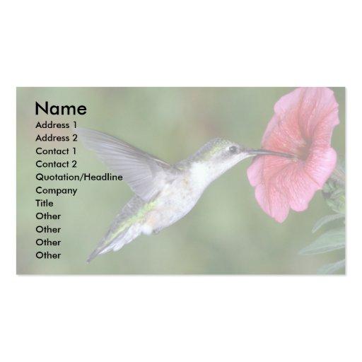 colibrí Rubí-throated (femenino) con la petunia Tarjetas De Visita