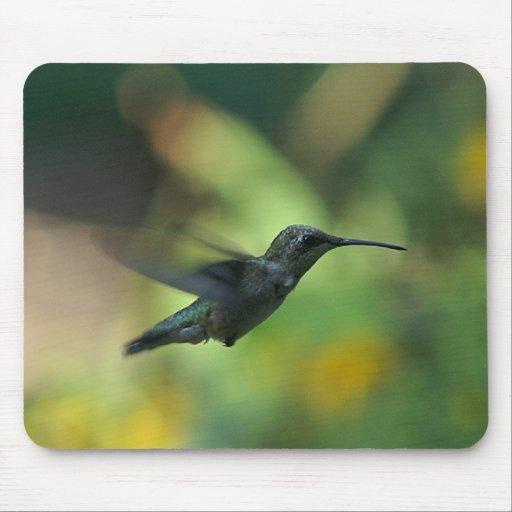 colibrí Rubí-throated mousepad. Alfombrillas De Raton