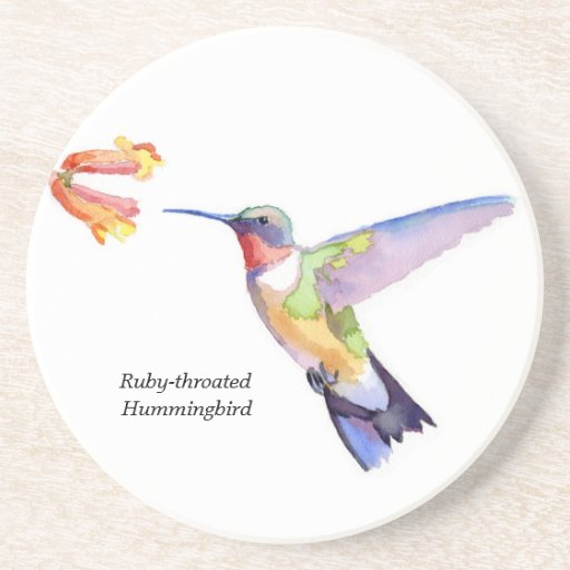 colibrí Rubí-throated Posavasos Cerveza