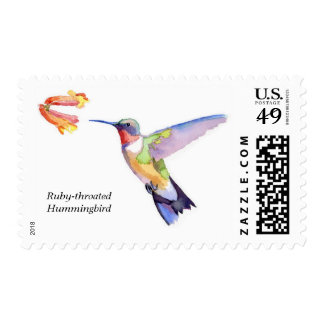 colibrí Rubí-throated Sello