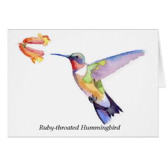 colibrí Rubí-throated Tarjeta