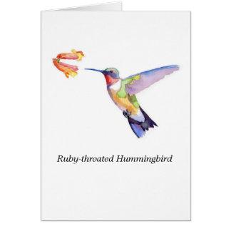 colibrí Rubí-throated Tarjeta Pequeña