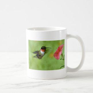 colibrí Rubí-throated (varón) con la petunia Tazas