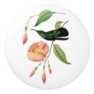 Colibrí Throated verde del Carib Pomo De Cerámica