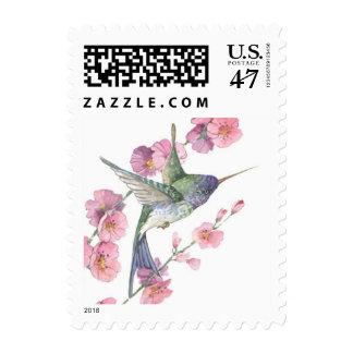 Colibrí Timbre Postal