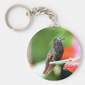 Colibrí tropical en el alimentador llavero personalizado
