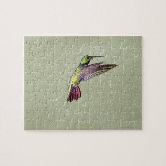Colibrí Verde-breasted Anthracocorax 2 del mango Rompecabeza Con Fotos