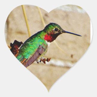 Colibrí verde de rubíes pegatina en forma de corazón
