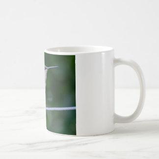 Colibrí verde y azul - taza de 11 onzas