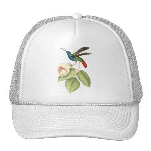 Colibrí y flor gorros