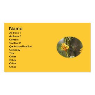 Colibrí y flor tropicales tarjeta de visita