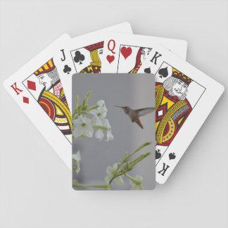 Colibrí y flores blancas barajas de cartas