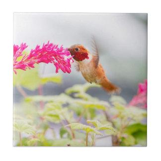 Colibrí y flores del vuelo azulejo cuadrado pequeño