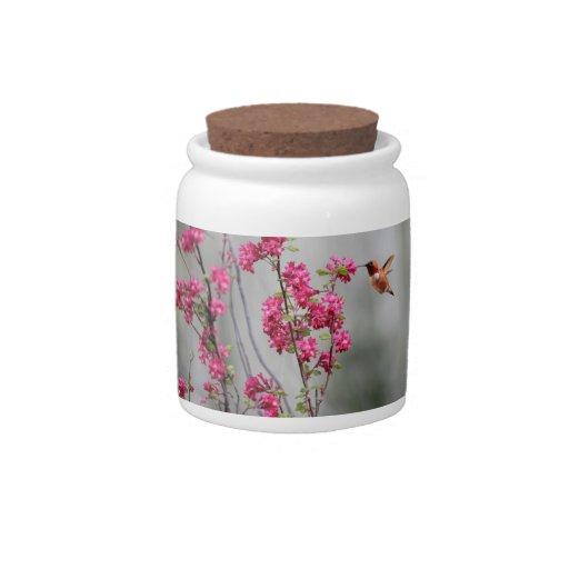 Colibrí y flores del vuelo jarras para caramelos