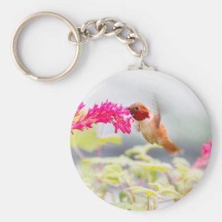 Colibrí y flores del vuelo llaveros