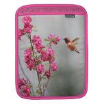 Colibrí y flores del vuelo mangas de iPad
