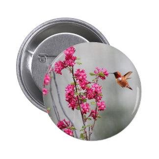 Colibrí y flores del vuelo pin
