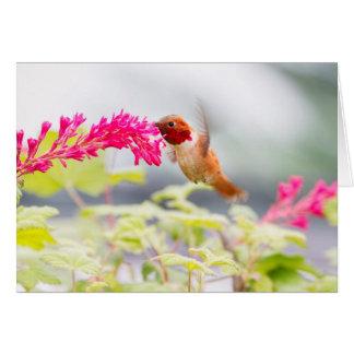 Colibrí y flores del vuelo tarjeta de felicitación