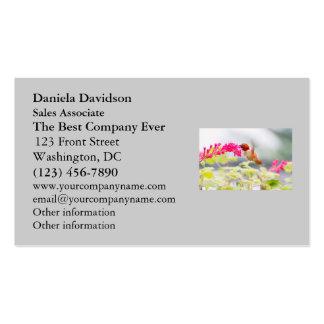 Colibrí y flores del vuelo tarjetas de visita