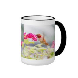 Colibrí y flores del vuelo taza de dos colores