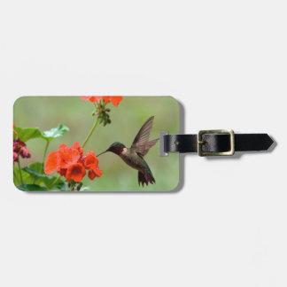 Colibrí y flores etiqueta para maleta