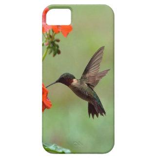 Colibrí y flores iPhone 5 carcasa
