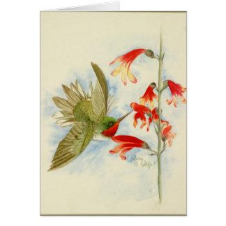 Colibrí y flores rojos tarjeta pequeña