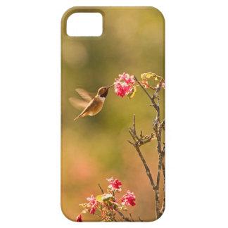 Colibrí y flores rosadas iPhone 5 cobertura