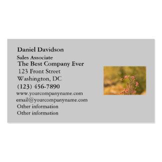 Colibrí y flores rosadas tarjeta de visita