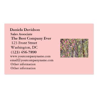 Colibrí y flores rosadas tarjetas personales